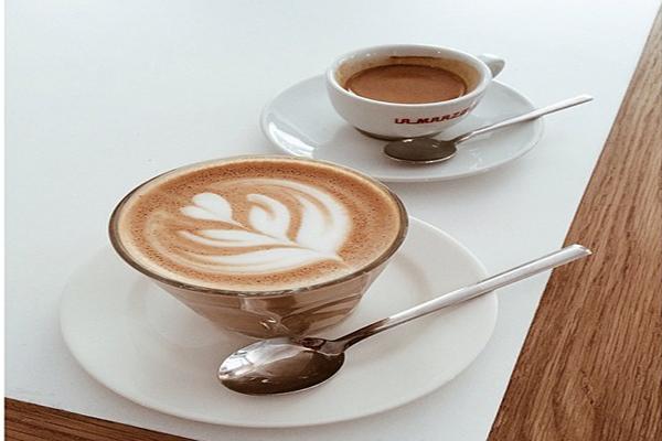 federal cafe - madrid