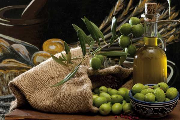 Aceite de oliva: Festival de los sentidos