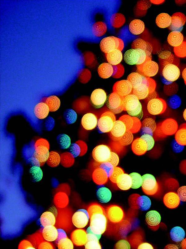 Los mejores planes para esta Navidad