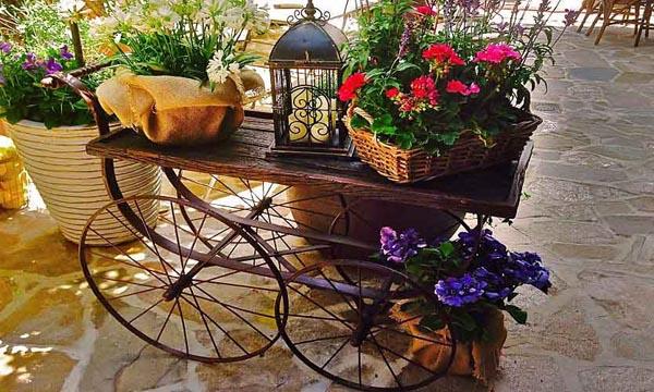 jardinbachillerterrazas