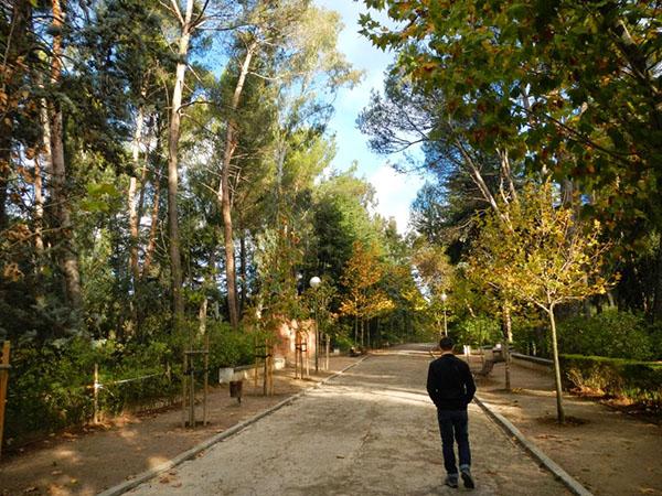 parques3