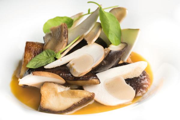 hongos con salsa de yema y vainilla-10