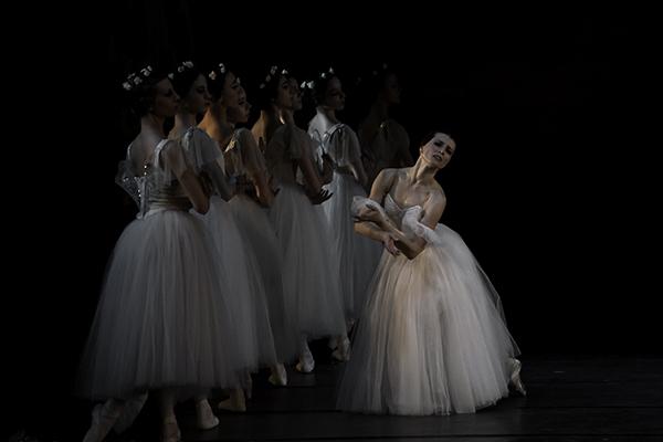 El Lago de los cisnes vuelve a Madrid en febrero