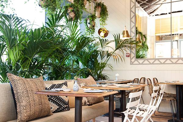 Gana una velada con Fonsi Nieto en el restaurante Sushita
