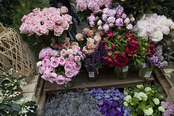 mercado de las flores hsm4