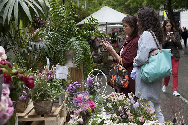 mercado de las flores hsm6